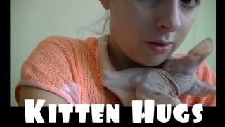 getlinkyoutube.com-Hairless Cat Gives Big Hugs!