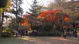 getlinkyoutube.com-4K 成田山公園の紅葉 Panasonic HC-X1000