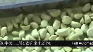 getlinkyoutube.com-蒜頭剝皮機(Garlic Peeler Machine)