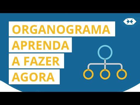 Processos Administrativos - Organograma - Hierarquia, Autoridade e Responsabilidade