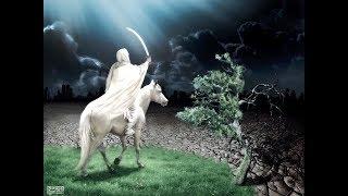 getlinkyoutube.com-نهاية العالم نبؤة نبي : 18 ـ 20 نزول عيسى وقتل الدجال بالقدس ، ونطق الشجر والحجر
