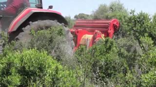 Download video raccoglisassi raccolta sassi cavalli for Di raimondo macchine agricole