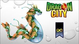 getlinkyoutube.com-Dragon City - Sap Dragon