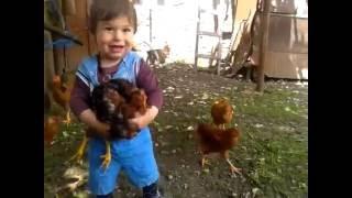 Babies Love Chicken