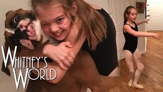 getlinkyoutube.com-Ballet with a Boxer   Ballerina moves in the Kitchen   Whitney