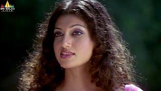 getlinkyoutube.com-Hamsa Nandini Scenes Back to Back | Telugu Movie Scenes | Sri Balaji Video