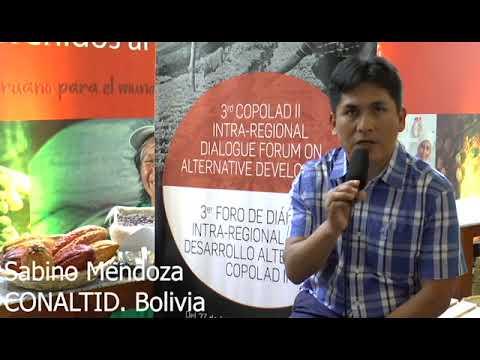 Sabino Mendoza. CONALTID, Bolivia (II)