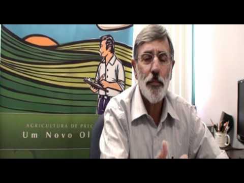 Solos: Agricultura de Precisão