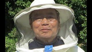getlinkyoutube.com-Мёд Japan. Японское пчеловодство.Дикий мёд.