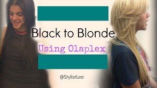 getlinkyoutube.com-Black to Blonde Hair | Olaplex | No Breakage| West Hollywood Hair Salon | Stylist Lee