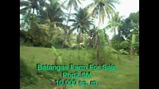 Batangas Farm For Sale