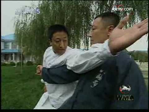 baji quan application (tuo piang shi)