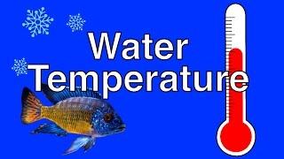 How Temperature Affects Fish Behavior