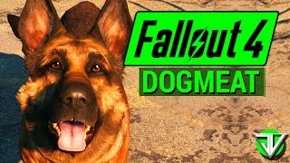 getlinkyoutube.com-FALLOUT 4: Dogmeat COMPANION Guide! (Everything You Need to Know About Dogmeat)
