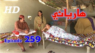 Hareyani Ep 259  Sindh TV Soap Serial    10 7 2018   HD1080p  SindhTVHD Drama