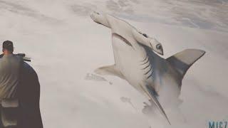 getlinkyoutube.com-GTA V PS4 CURIOSIDADES |ORCAS ASESINAS,BALLENAS AZULES,DELFINES Y TIBURONES MARTILLO!!