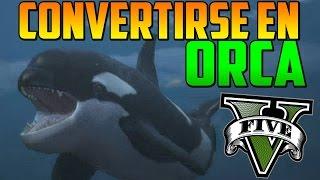 getlinkyoutube.com-INCREÍBLE! COMO CONVERTIRSE EN ORCA, TIBURÓN, DELFIN... - MISTERIOS GTA 5 PS4 - EASTER EGG GTA 5 PS4