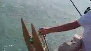 getlinkyoutube.com-Mechanical bait-runner fishing boat