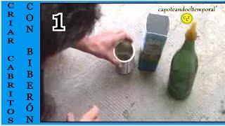 getlinkyoutube.com-como criar cabritos, a biberón ( mamadera, mamila, tetero )1ª parte
