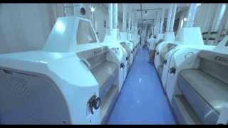 getlinkyoutube.com-Diamonds Wheat Products from Diamond Roller Flour Mills Pvt Ltd: Corporate Video English Version