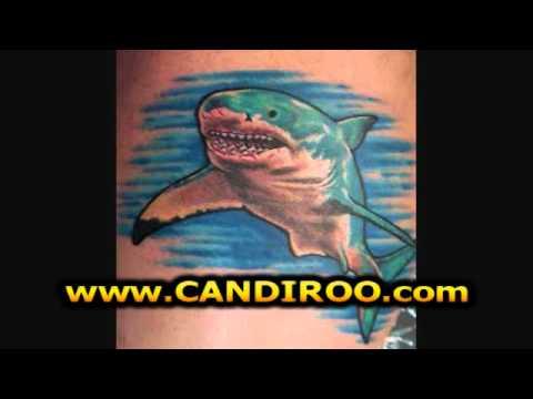 Hai Tattoo Vorlagen, Haifisch Tattoo