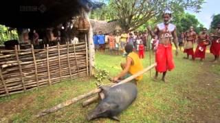 Tribal Wives: Kitava