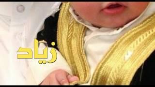 getlinkyoutube.com-صوت شيله تبشير مولود  ولد