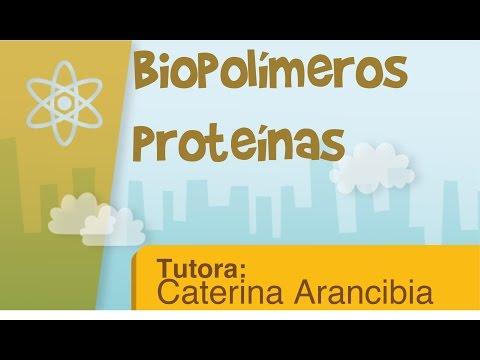 Biopolímeros-proteínas