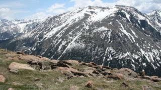 getlinkyoutube.com-Driving Trail Ridge Road - Rocky Mountain National Park