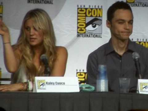 The Big Bang Theory panel at Comic-Con 2010