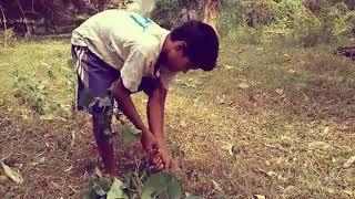 Horror version off akshay Kumar on xxx vidio