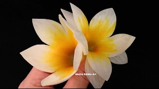 getlinkyoutube.com-Beautiful Frangipani Flower Spring Onion - Lesson 25 By Mutita Art Of Fruit Vegetable Carving Video