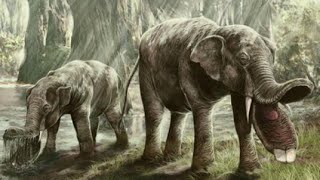 getlinkyoutube.com-10 Nightmarish Animals you will be Happy are Extinct