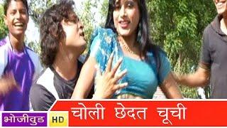 HD चोली छेड़ता चूची | Choli Chedat Chuchi | Bhojpuri Hot Song 2015 भोजपुरी सेक्सी लोकगीत