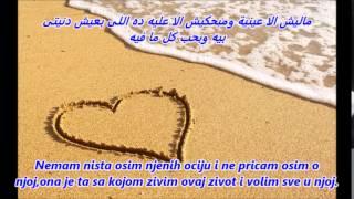 getlinkyoutube.com-Mohamed Hamaki - Mn Alby Baghany.Serbian Subtitle