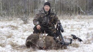 getlinkyoutube.com-Охота на оленя
