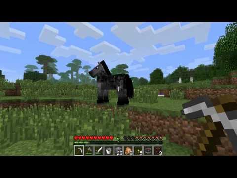 Tudo Sobre Cavalos! - Minecraft Guia (11)