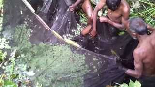 getlinkyoutube.com-Fishing In Bangladesh Biswanath