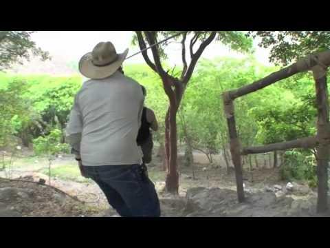 Grutas de Tolantongo y La Gloria en el Estado de Hidalgo