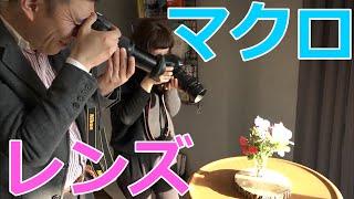 【カメラ】マクロレンズの特徴と使い方【写真】