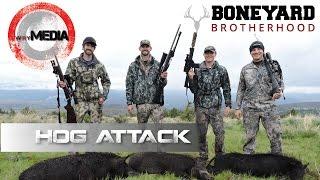 Wild Hog Hunt | Herd of 30 + Wild Boars Charge Hunters