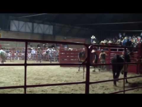 Rodeo Americano Pa Caballos San Miguel 2014