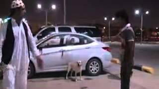 getlinkyoutube.com-ربط الكلب بسيارته  :   مقالب السعودية