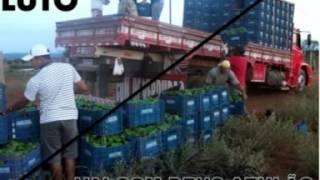 getlinkyoutube.com-homenagem para os caminhaoneiros sergipanos