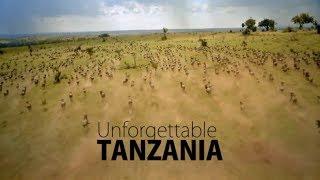 MBUGA ZA WANYAMA: UNFORGETTABLE TANZANIA
