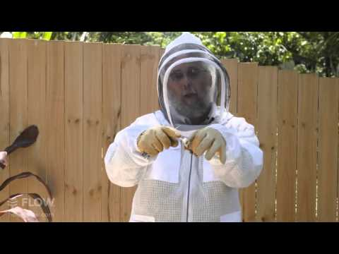 Beginner Beekeeping Ep 4 Part 2 - Installing a package with Michael Bush