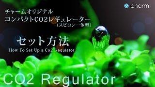 getlinkyoutube.com-【チャーム】 チャームオリジナルCO2フルセットで水草を育成