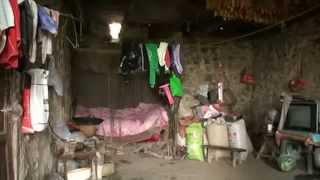 getlinkyoutube.com-中国貧困が生み出した奇病