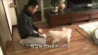 getlinkyoutube.com-동물농장 610회 #1
