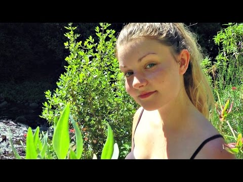 ASMR Soul Reflection In Nature